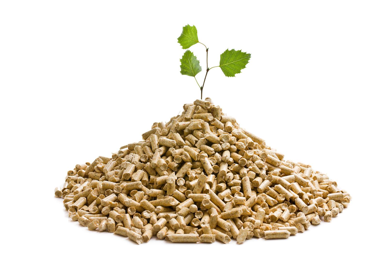 ekologiczny-pellet-biopaliwo